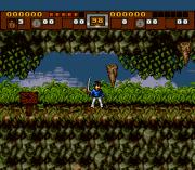 Play 3 Ninjas Kick Back Online