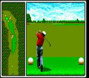 Play Arnold Palmer Tournament Golf Online
