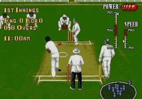 Play Brian Lara Cricket Online