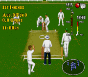 Play Brian Lara Cricket (June 1995) Online