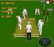 Play Brian Lara Cricket (March 1995) Online