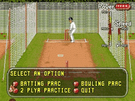 Play Brian Lara Cricket '96 Online