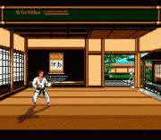 Play Budokan – The Martial Spirit Online