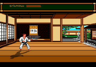 Play Budokan – The Martial Spirit Online