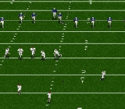 Play College Footballs National Championship II Online