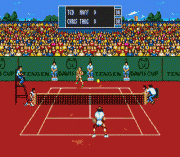 Play Davis Cup World Tour (June 1993) Online