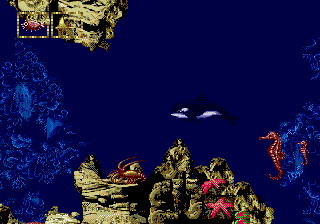 Play Ecco Jr. (February 1995) Online