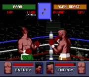 Play Evander Holyfield's 'Real Deal' Boxing Online