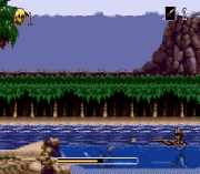 Play Pirates of Dark Water Online