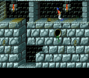 Play Prince of Persia (Earlier) Online