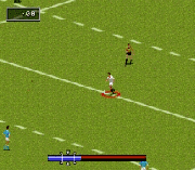 Play Rugby World Cup '95 Online