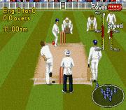 Play Shane Warne Cricket Online