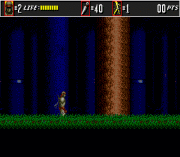 Play The Super Shinobi II (Earlier) Online