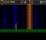 Play The Super Shinobi II (Earlier) Online