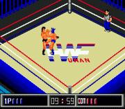 Play Thunder Pro Wrestling Retsuden Online