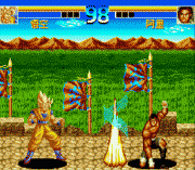 Play Top Fighter 2005 Online