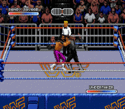 Play WWF Royal Rumble Online