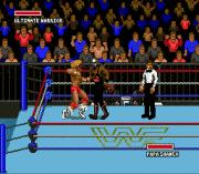 Play WWF Super Wrestlemania Online